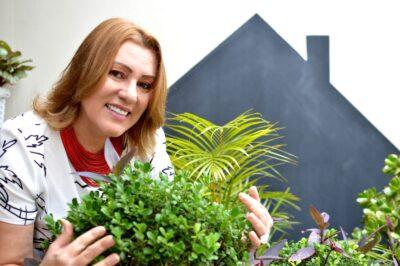 Plantas por toda a casa garantem clima agradável e aconchegante
